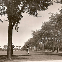 Original first tee (before direction was reversed). Dutch elm disease destroyed these elm trees along country club road in the 1960s.