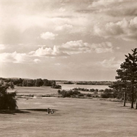 The original 9th hole (now part of Nos. 10 & 11), looking north and west.